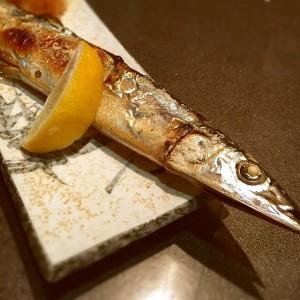 秋刀魚の写真