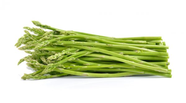 asparagus on white background