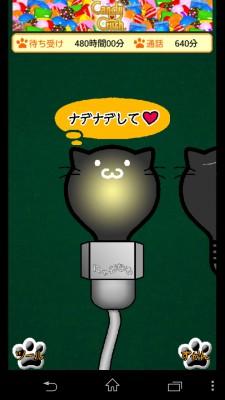 電球ねこ3